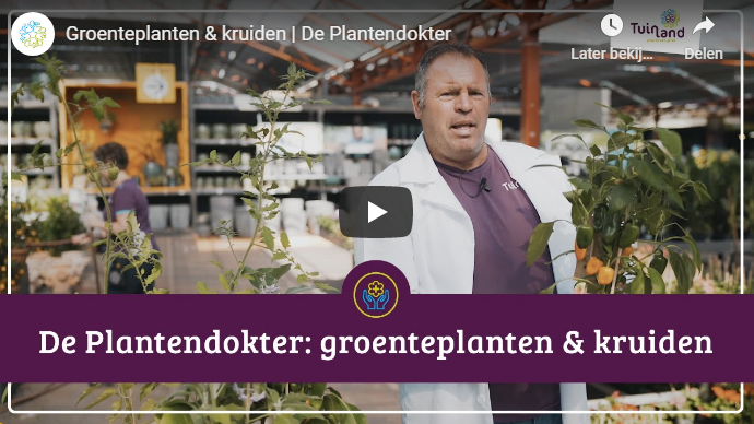 https://tuinland.nl/nl/aflevering-4/page/2714/