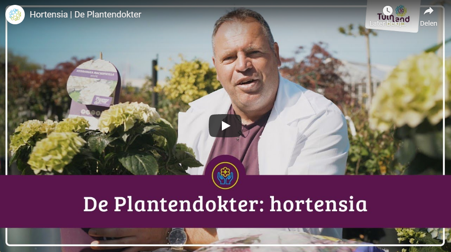 https://tuinland.nl/nl/aflevering-3/page/2699/
